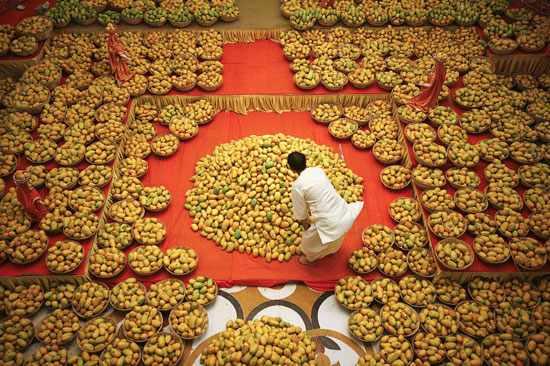image معرفی و عکس های دیدنی شهر توریستی چندی گر در هند