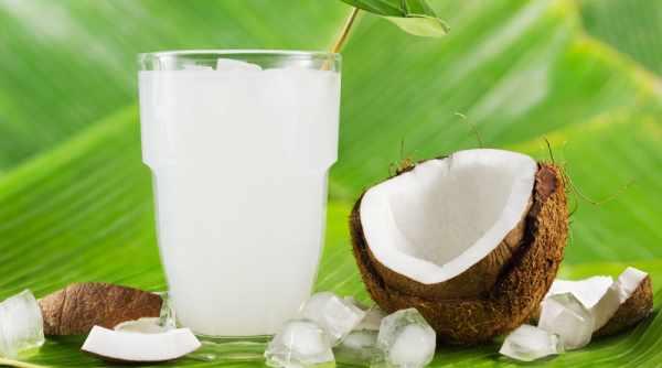image خواص نوشیدن آب نارگیل برای سلامتی و ورزشکاران