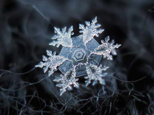 image عکس های فوق العاده دیدنی از دانه های برف
