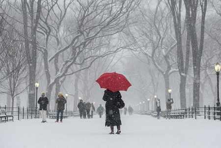 image منظره برفی و زیبا از پارک مرکزی شهر نیویورک