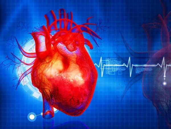 image, بدترین ساعاتی که احتمال سکته قلبی وجود دارد در طول شبانه روز