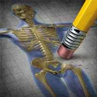 image, راهکارهای مفید برای جلوگیری از ابتلا به پوکی استخوان