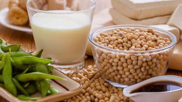 image, آیا خوردن سویا برای سلامتی مضر است و چرا