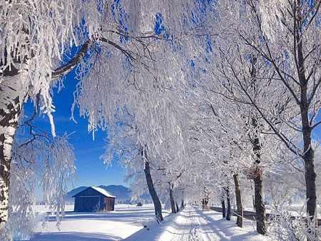 image منظره زیبای جاده و کلبه زمستانی در کوخل آلمان