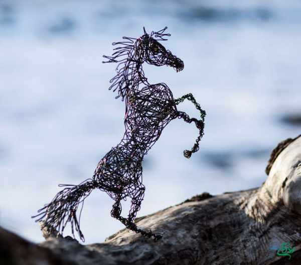 image, عکس مجسمه های زیبای ساخته شده با سیم