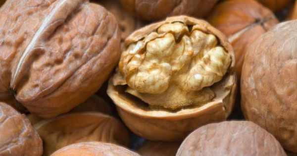 image فقط با خوردن خوراکی های مفید تمام روز سرحال باشید