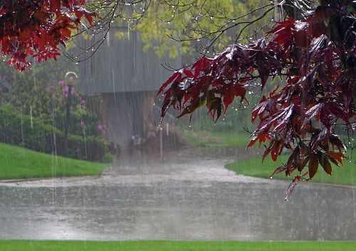image انشای زیبای باران یک صفحه ای برای بچه مدرسه ای ها