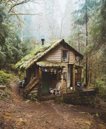 image عکس یک کلبه آرامش بخش در دل جنگل
