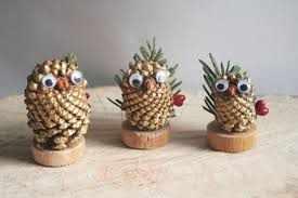 image آموزش تصویری تزیین منزل با میوه های زیبای کاج