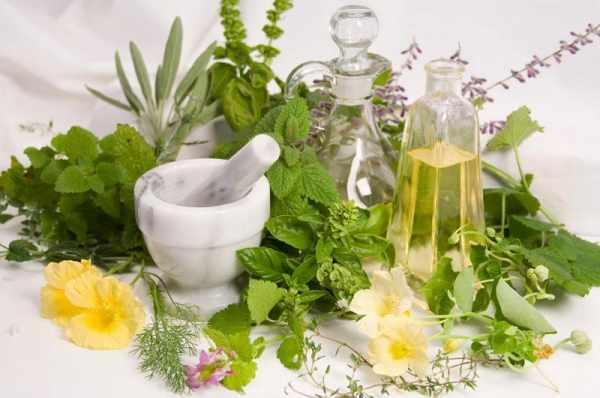image داروهای گیاهی و طبیعی که رشد مو را افزایش می دهند