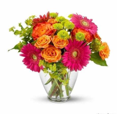 image توصیه های مفید برای نگهداری بهتر گل ها در آپارتمان
