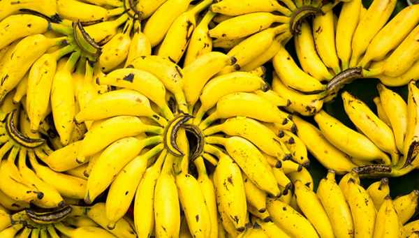 image, معجزه خوراکی برای سلامتی کامل بدن به اسم موز