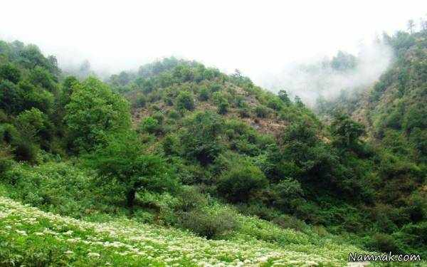 image عکس جاهای دیدنی شهرستان فومن با توضیحات