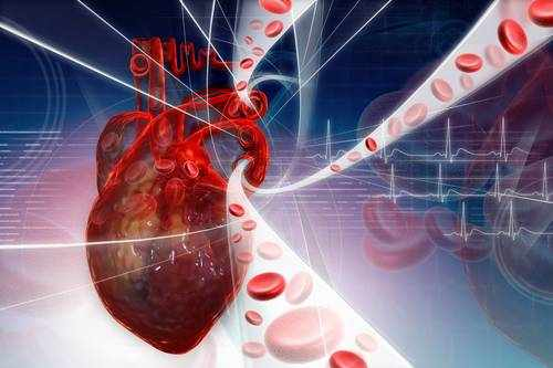image, آیا گردش خون من ضعیف است نشانه ها و نحوه درمان این مشکل