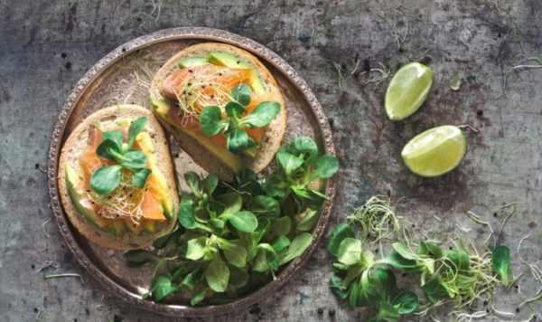 image خوردن و مصرف روغن ماهی چه اثراتی برای سلامتی دارد