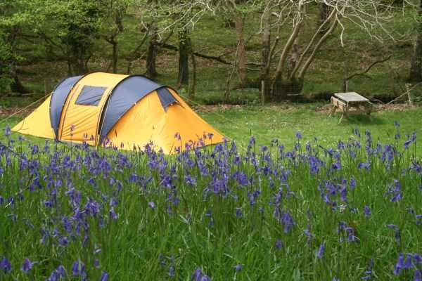 image چطور خود را برای یک گردش در دل جنگل و کوه آماده کنید