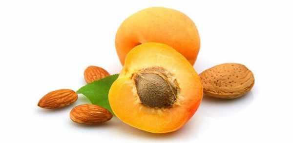 image میوه زردآلو چه خواص و ویتامین هایی دارد