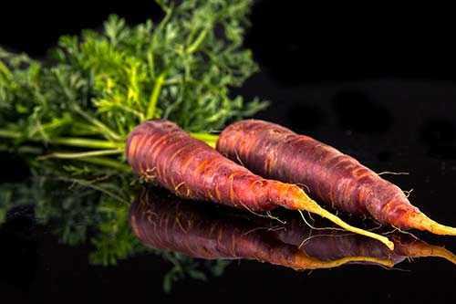 image, هویج بنفش چیست و چه خواصی دارد