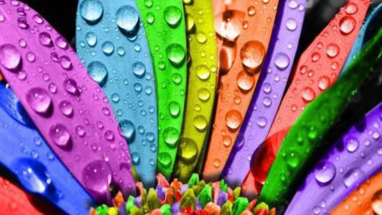 image, تعبیر و تفسیر هر رنگ در علم روانشناسی چیست