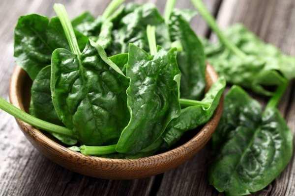 image چه خوراکی هایی بخورید تا کمتر استرس داشته باشید