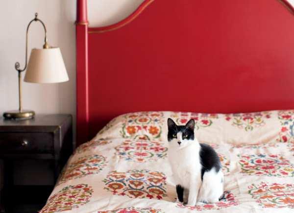 image, چطور اصول فنگ شویی را در دکوراسیون اتاق خواب رعایت کنید