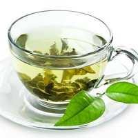 عکس, خواص جادویی چای سبز برای سلامتی انسان