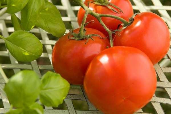 image خوراکی هایی که برای داشتن قلبی سالم مفید هستند