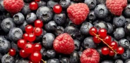 image, با خوردن این خوراکی ها باهوش می شوید