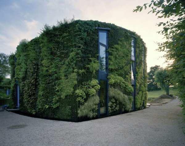 image تصاویر زیبا از خانه ای زیبا با نمایی از گل و گیاه طبیعی