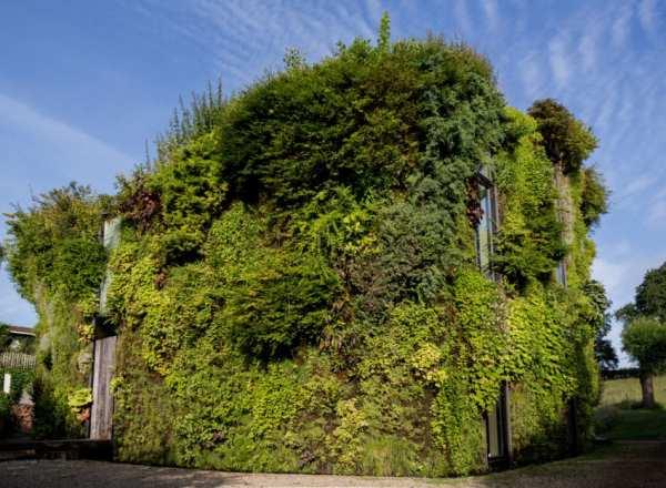 image, تصاویر زیبا از خانه ای زیبا با نمایی از گل و گیاه طبیعی