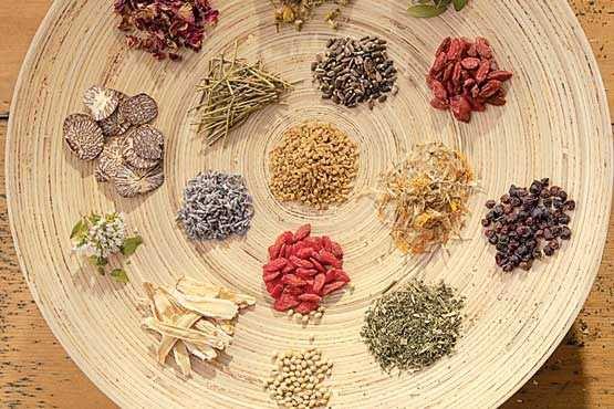 image معرفی داروهای گیاهی مفید برای درمان بیخوابی