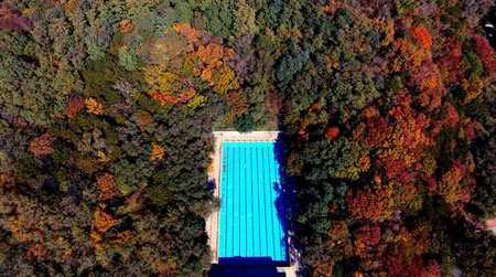 image تصویر هوایی از یک استخر داخل جنگلی در شنیانگ چین
