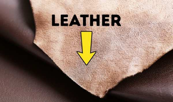 image چطور بفهمید کیف و کفش چرم واقعی هستند یا تقلبی