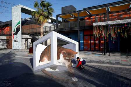 image, نقاشی سه بعدی گربه در خیابان های دبی امارات