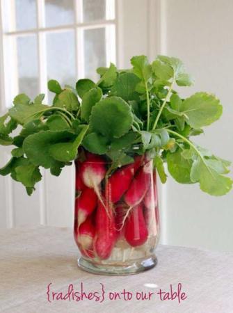 image ایده های جدید برای مدل های مختلف کاشت سبزه هفت سین