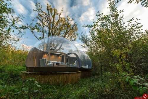 image عکس و توضیحات خواندنی از هتل های حبابی جنگل های ایرلند