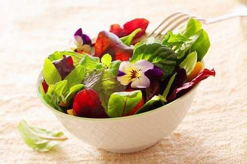 image بهترین غذاها برای کوچک شدن شکم کدام است