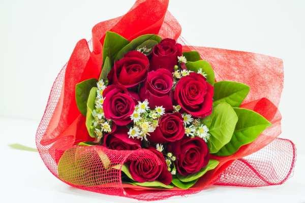 image تصاویر زیبای گل رز برای عکس پروفایل