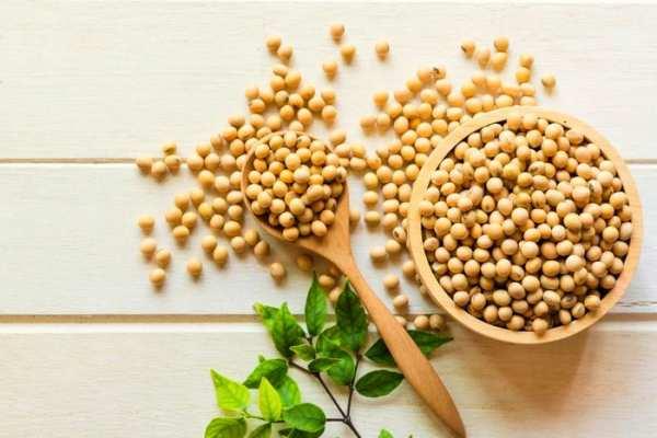 image لیست مواد مغذی موجود در ۱۰۰ گرم سویا