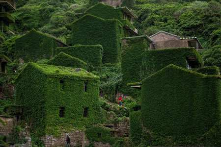 image روستایی زیبا پوشیده از گیاهان در استان چیانگ چین