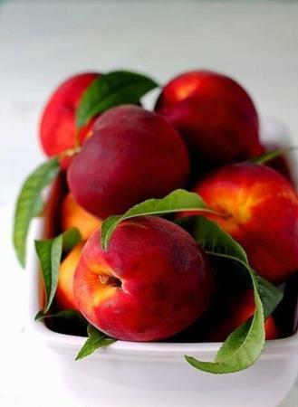 image عکس های زیبا و خوشمزه از میوه های تابستانی