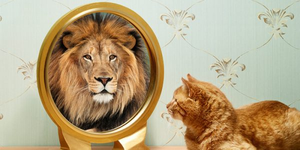 image چطور خودم را باور داشته باشم و قوی شوم