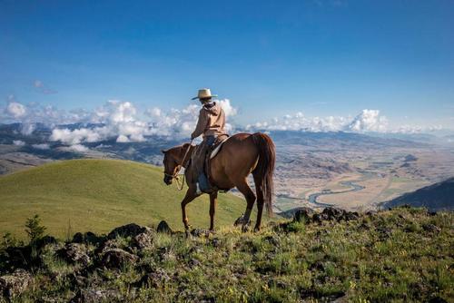 image تک سواری بر اسب در پارک ملی یلو استون آمریکا