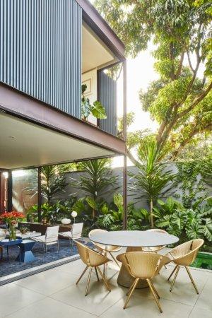 image چطور از گیاهان سبز و درختان برای دکوارسیون خانه استفاده کنید