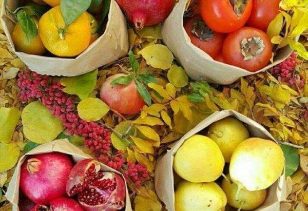 image میوه های آرام کننده اعصاب چه میوه هایی هستند