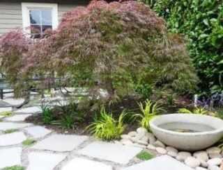 image ایده های جدید  شیک برای تزیین باغچه کوچک