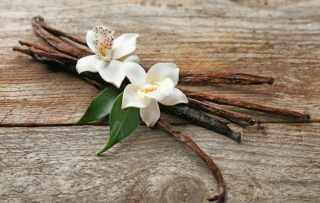 image وانیل چه فایده ای برای سلامتی و زیبایی دارد